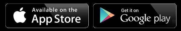 disweb-web-agency-torino-app-chat